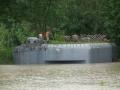 Povodne Bunkre.49