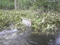 Povodne Bunkre.6